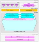 Regelkreis Phase 2: Kernsystem anwenden
